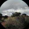 New Mexico, 2004